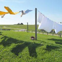 line-drying